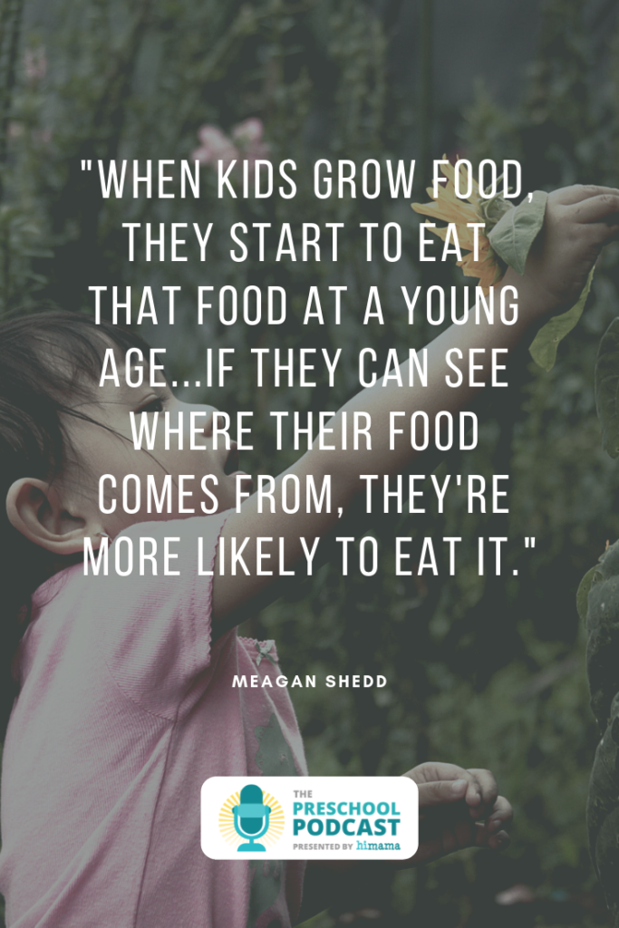 farm to table in early childhood education